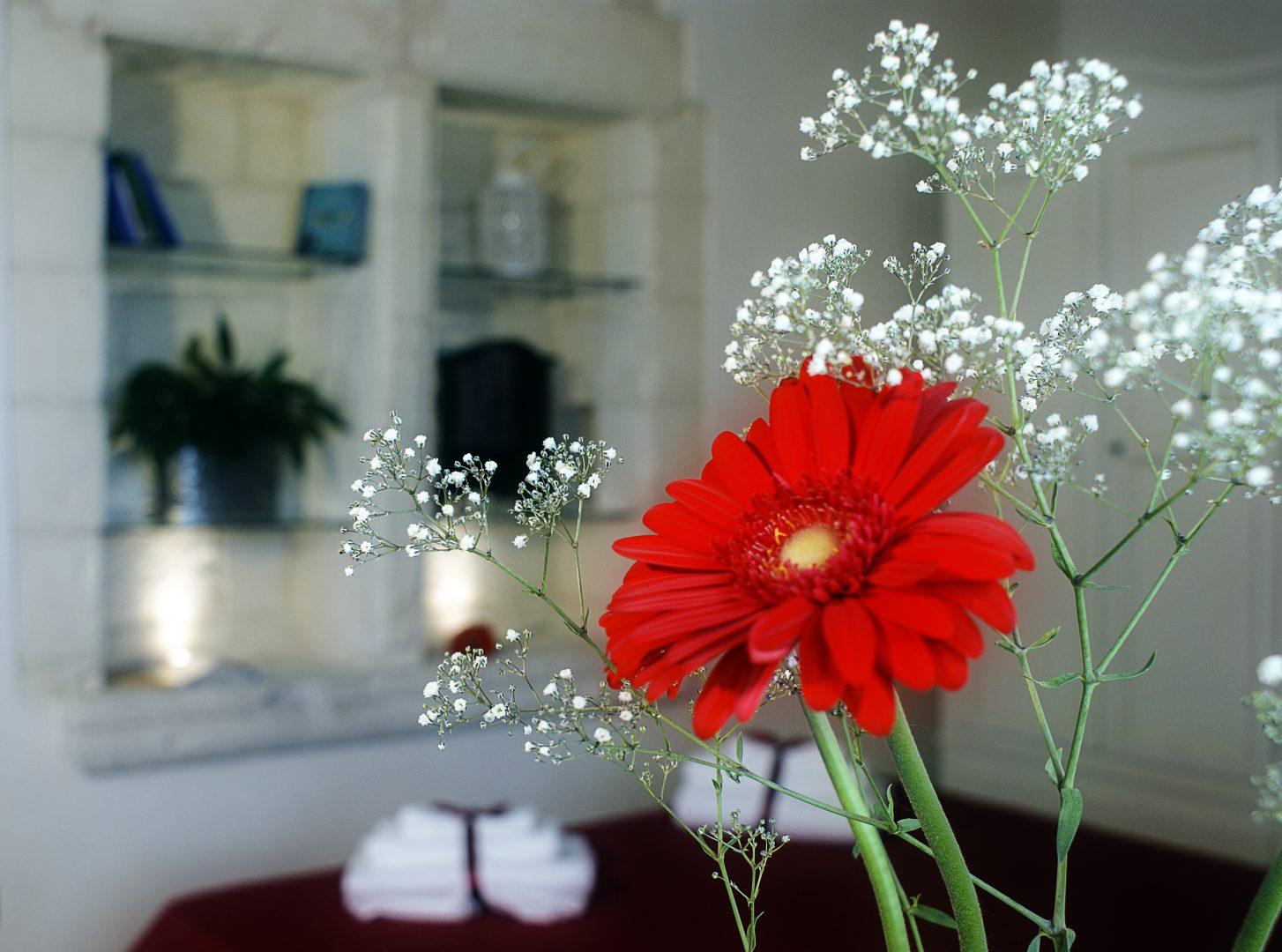 suite torre vergallo fiori